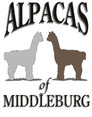 Alpacas Logo for Alpacas of Middleburg